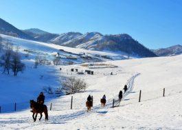 Конный тур зимой на Алтае
