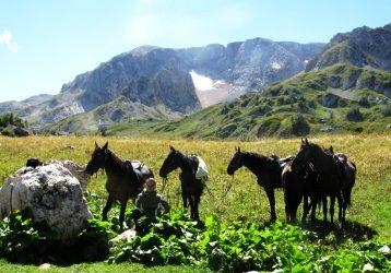 Медовые водопады. Конный тур по Кавказу