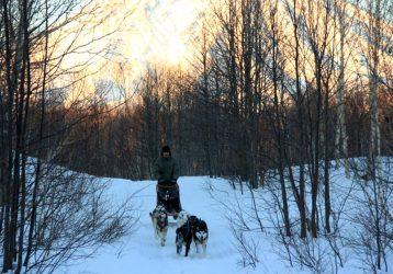 Зимняя Камчатка (4)