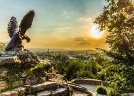 кисловодск орел