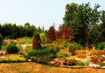 Ботанический-сад-в-Соликамске