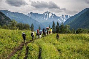 Летние туры по Алтаю