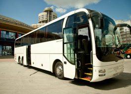Туристический-Автобус-Man-lions