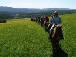 Туры в Башкирию