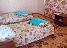 Абхазский-дворик-(2)
