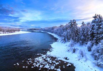 Сказка Зимней тайги