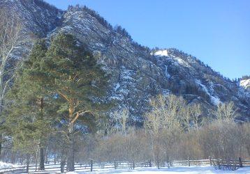 Снежные легенды Алтая (Рождество)