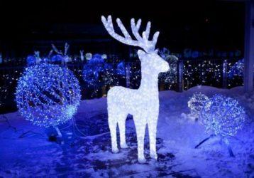Экскурсионный тур «Новый год с видом на Эльбрус»!