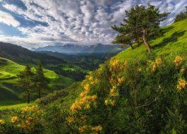 Активный тур в Горной Ингушетии «Величие гор»