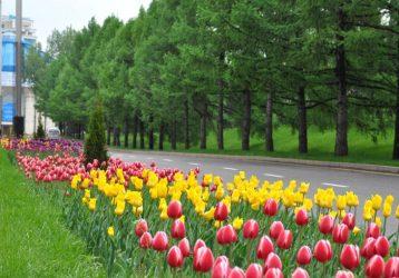 Весна в Алматы – экскурсионный тур с перелётом из Екатеринбурга