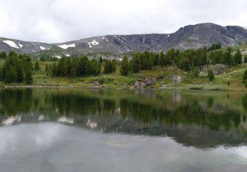 Алтай113309