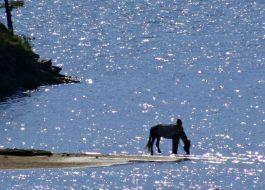 2020 Озеро Байкал и Долина Спящих духов