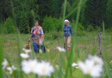 Ботаническая-экскурсия-в-окрестности-Атига