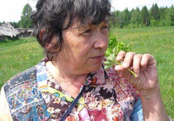 Ботаническая-экскурсия-выходного-дня