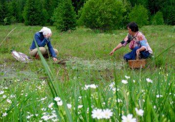 Ботаническая-экскурсия-выходного-дня-в-окрестности-Атига