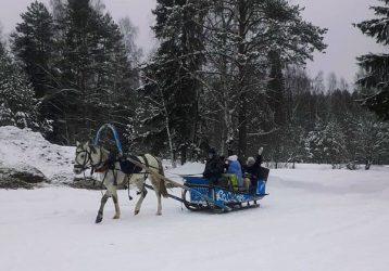 Катание-в-Кашеве-Сафари-Аркаим-Трэвел-выходной