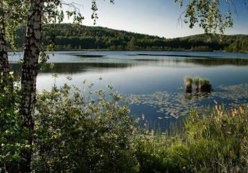 Лечебное-озеро-Светлое